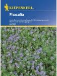 Phacelia Bienenweide Gründünger Portion , Grundpreis: 0.05 € pro 1 g