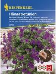 Petunia grandiflora Hängepetunien Fortunia Blue Wave dunkelblau Pillensaat