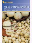 Weiße Wintersteckzwiebeln Silvermoon 250gr , Grundpreis: 9.16 € pro 1 kg