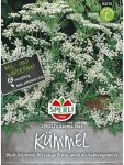 Kümmel Carum carvi SPERLING´s Aroma Star