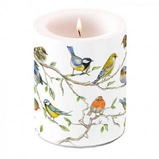 Kerze groß Vogel Treff