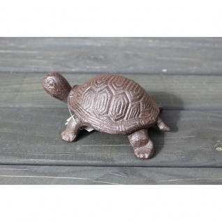 Schildkröte Volleisen antikbraun