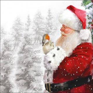 20 Servietten Weihnachtsmann mit Vogel - Vorschau 1