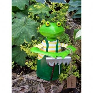 Zaunhocker Frosch mit Rechen