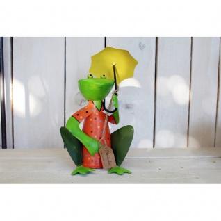 Frosch Zaunhocker bunt Schirm