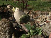 Keramik Vogel, hängend, auf Holzstab, sandfarben m