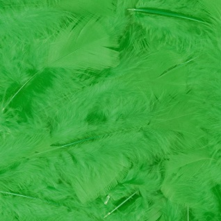 100 Stück Federn GRÜN gefärbt ca.12 cm, Hühnerfedern, Basteln für Kostüme