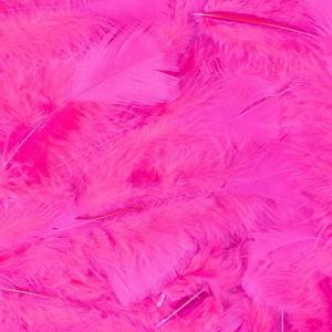 100 Stück Federn PINK gefärbt ca.12 cm, Hühnerfedern, Basteln für Kostüme