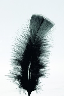 100 Federn SCHWARZ, gefärbt 15 cm, Hühnerfedern, Basteln für Kostüme