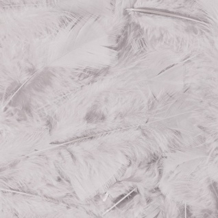 100 Stück Federn WEISS, gefärbt ca.15 cm, Hühnerfedern, Basteln Kostüme Hüte