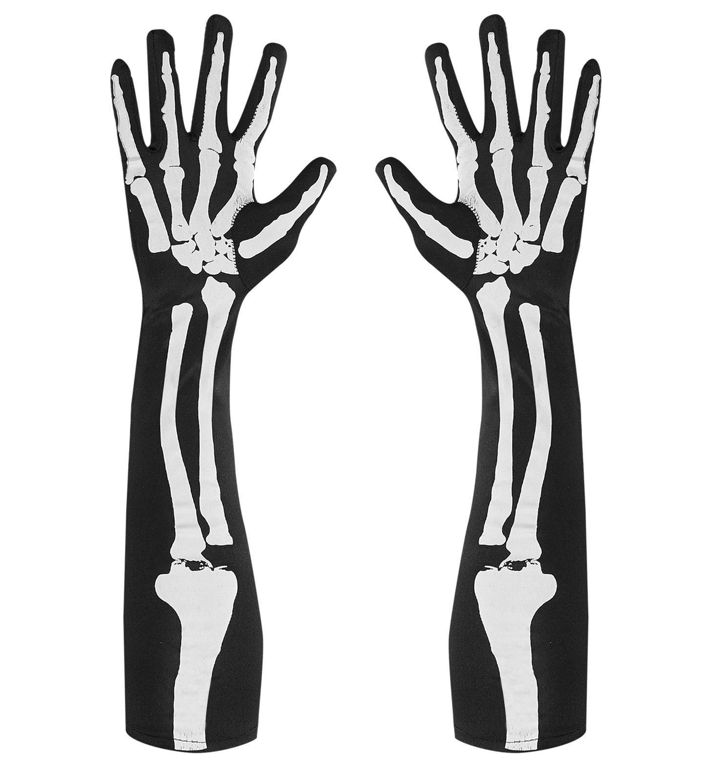 Groß Knochen In Unterarm Ideen - Menschliche Anatomie Bilder ...