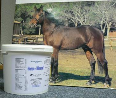 Mineralfutter hochkonzentriert für Pferde - Vorschau