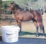 Vitamin E und Selen für Pferde