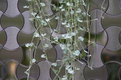 Mosaik Fliese massiv Metall Edelstahl marine hochglänzend in grau 1, 6mm stark ALLOY Infinit-S-S-MM Designed by Karim Rashid 0, 91 m2 - Vorschau 5