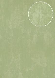 Uni Tapete Atlas TEM-5112-9 Vliestapete strukturiert in Spachteloptik schimmernd grün blass-grün weiß-grün 7, 035 m2
