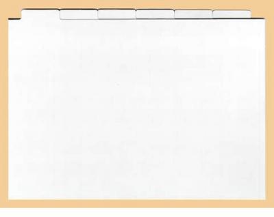 1 x Kobra KR Registersatz mit 6 Karten weiss für Einsteckkarten Steckkarten DIN A5 & Für die Kassetten KS KSK Karteikästen KS1 KS2