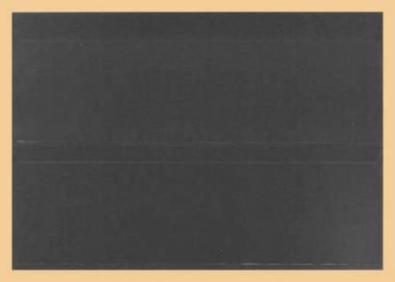 10 x A5 KOBRA K12 Extra starkem Kunststoff Einsteckkarten Steckkarten Schwarz 210 x 147 mm mit 2 Streifen 202 x 58 mm - Vorschau 2