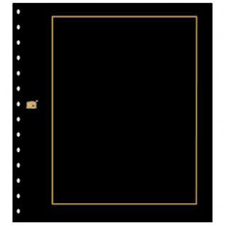 10 x SAFE 793 Karton Blankoblätter Favorit Schwarz mit Goldrand