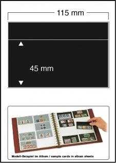 100 x SAFE 7481 Klemmkarten Schwarz 1 Streifen 115 x 45 mm für SAFE 749 Einsteckblatt