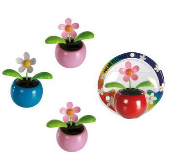 4 x Flip Flap Wackelblumen Solar Power Flower Wackel Blumen Gänseblümchen in 5 knalligen Farben