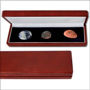 SAFE 7911 Holz Sammeletui Mahagonifarbend für Mineralien - Edelsteine - Fossilien - Steine