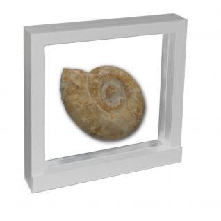 SAFE 4517 SCHWEBE RAHMEN FOTORAHMEN BILDERRAHMEN 3D Weiß Außen 130 x 130 mm / Innen 100 x 100 mm Für Münzen & Medaillen & Mineralien & Fossilien & Militaria & Schmuck