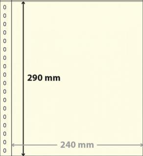 1 x LINDNER 833 Klarsichthüllen Banknotenhüllen 1 Tasche Streifen 240 x 290 mm mit weißen Zwischenblättern - Vorschau 1