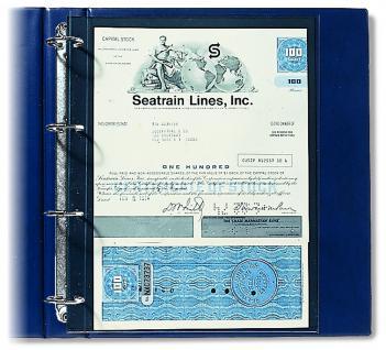 10 SAFE 450 Compact A4 Einsteckblätter Hüllen Spezialblätter DIN A4 210 x 295 mm Dokumente Urkunden - Vorschau 1