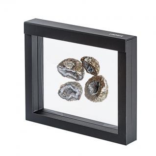 LINDNER 4831 NIMBUS 230 Sammelrahmen Schweberahmen 3D Für Mineralien Fossilien - Vorschau 1