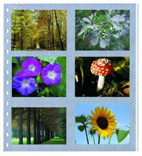 5 x SAFE 676 Einsteckblätter Spezialblätter Fotoblätter Favorit selbstklebend Für 12 Bilder Fotos Photos 9 x13 cm - Ansichtskarten Postkarten