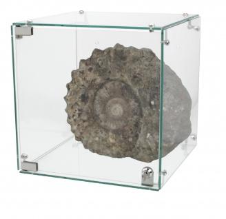 SAFE 5149 Echt GLAS Cube Sammel Vitrinen Maße 350 x 350 x 350 mm Für Mineralien & Fossilien & Edelsteine & Bernsteine