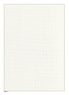 10 x LINDNER 805a Blanko Blätter Weiß DIN A4 mit silbergrauem Netzunterdruck + Schwarze Umrandunsglinie 199 x 286 mm - ohne Lochung Format 291x297mm