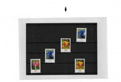 100 SAFE 9247 Hüllen Einsteckkartenhüllen Postkartenhüllen Karten bis Format C6 ca. Innenformat 115 x 163 mm