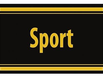 "1 x SAFE 1130 SIGNETTE Aufkleber selbstklebend "" Sport """