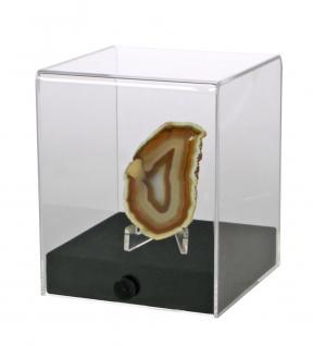 """SAFE 5287 Acrylglas Präsentations Vitrinenwürfel Deko Aufsteller Würfel Universal """" CUBE M """" Glasklar 100 x 100 x 120 mm Für Mineralien - Schnecken - Muscheln - Fossilien - Bernstein - Kristalle"""