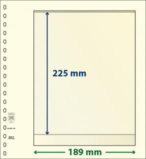 10 x LINDNER 802104P T-Blanko-Blätter Blankoblatt 18-Ring Lochung - 1 Tasche 225 x 189 mm