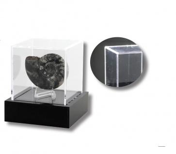 """SAFE 5243 Beleuchtete Acrylglas Präsentations Vitrinenwürfel Deko """" Light CUBE """" 100x100x100 mm Für Mineralien - Fossilien - Bernstein - Schnecken - Muscheln - Kristalle"""