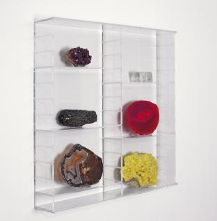 SAFE 5210 ACRYLGLAS Sammel Vitrinen Universal XL Modul A Maße 50 x 50 x 10 cm + 2 x 4 Zwischenböden - Für Mineralien Fossilien