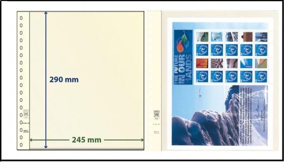 10 x LINDNER 802106P T-Blanko-Blätter Blankoblatt 18-Ring Lochung - 1 Tasche 290 x 245 mm