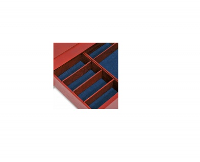 6 x SAFE 8570 Ergänzungsstege Set für Echtholz Sammelkassette 6880