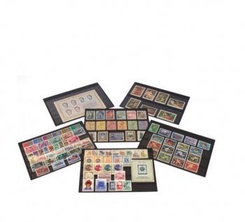 10 x A5 KOBRA K06 Extra starker Karton Einsteckkarten Steckkarten Schwarz Vorderseite versiegelt 210 x 147 mm mit 6 Streifen 202 x 16 mm - Vorschau 1