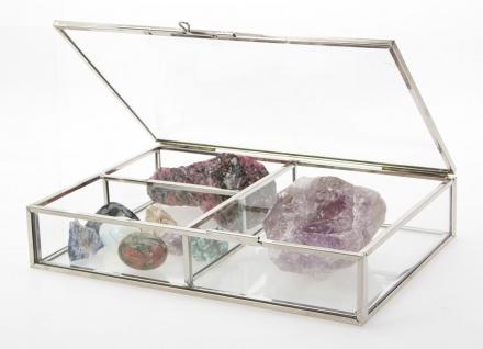 SAFE 5701 Silber Messing Echtglas Sammelvitrinen 20x14x4 cm Für Mineralien - Fossilien - Bernstein