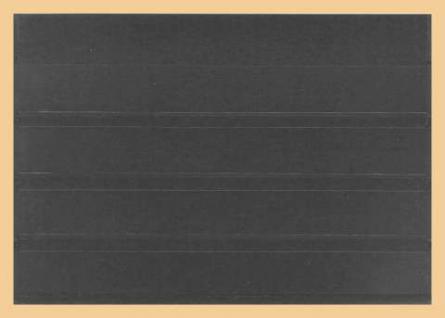 10 x A5 KOBRA K14 Kunstoff Einsteckkarten Steckkarten Schwarz 210 x 147 mm 4 Streifen 202 x 23 mm - Vorschau 2
