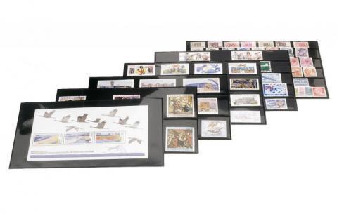 30 x HAWID HA 50503 DIN A5 Schwarze Einsteckkarten Steckkarten Klemmkarten 210 x 148 mm 5 Streifen - Vorschau 2