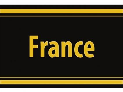 """1 x SAFE 1130 SIGNETTE Aufkleber selbstklebend Frankreich """" France """""""