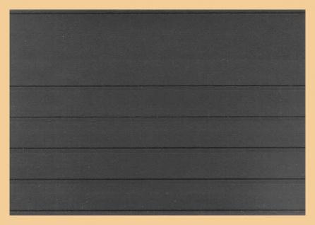 1000 x A5 KOBRA VT5 Einsteckkarten Steckkarten Klemmkarten mit 5 Streifen + Schutzfolie für Briefmarken Banknoten