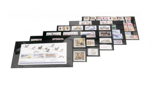 10 x LINDNER 773 Schwarze Hart - PVC Steckkarten Einsteckkarten DIN A5 3 Streifen glasklar 43 mm