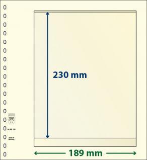 10 x LINDNER 802108P T-Blanko-Blätter Blankoblatt 18-Ring Lochung - 1 Tasche 230 x 189 mm