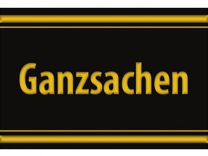 """1 x SAFE 1130 SIGNETTE Aufkleber selbstklebend """" Ganzsachen """""""