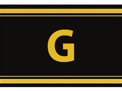 """1 x SAFE 1130 SIGNETTE Aufkleber Buchstabe selbstklebend - """" G """""""